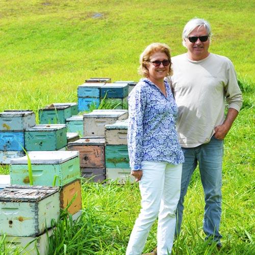 蜂の性格は養蜂家次第!?<br>やさしいはちみつの味は<br>良好な関係性から