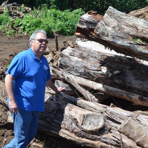 薪に炭に燻製チップ<br>ハワイの木材の<br>プロフェッショナル