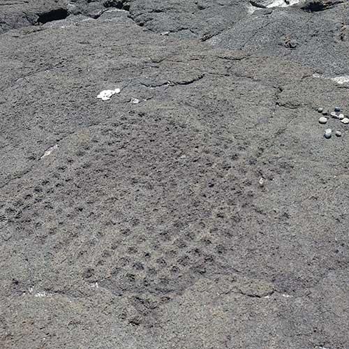 古代ハワイアンの<br>ボードゲーム発見!<br>ハワイ島コナ散策